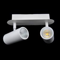 Точковий настінний світильник LED 2х5W 4000К WL-015356
