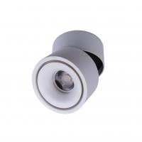 Точковий світлодіодний світильник накладний поворотний Prima Luce PL-20 12W WH